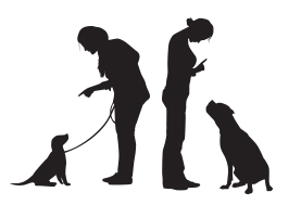basic-dog-training-and-obedience